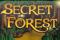 Таинственный Лес в клубе Вулкан